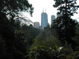 Melbourne Botanical Gardens with the city in the background